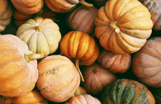 Pumpkins_kerstin